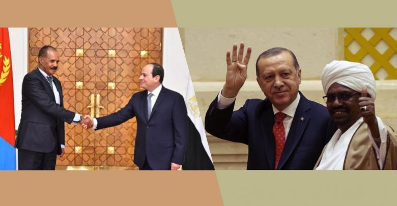 Egypt and Sudan: ambiguous paths