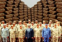 Photo of Egypt's cement crisis and military dominance