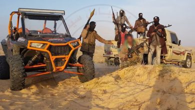 Development of the military situation in Sinai – April