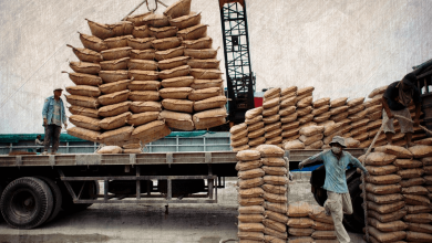 Photo of Crisis of Egypt's Cement Sector