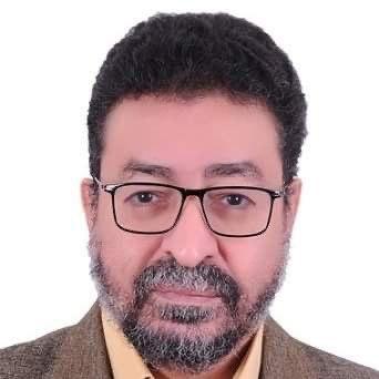Photo of Amer Abdel Moneim
